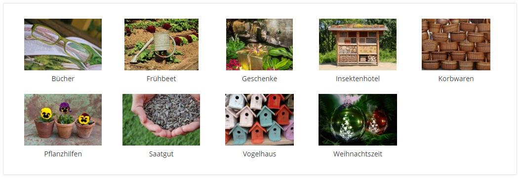 Unterkategorien im Flex Menu mit Bildern und Titeln