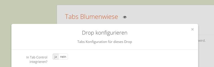 Tabs Drop in JTL Shop Tabs integrieren